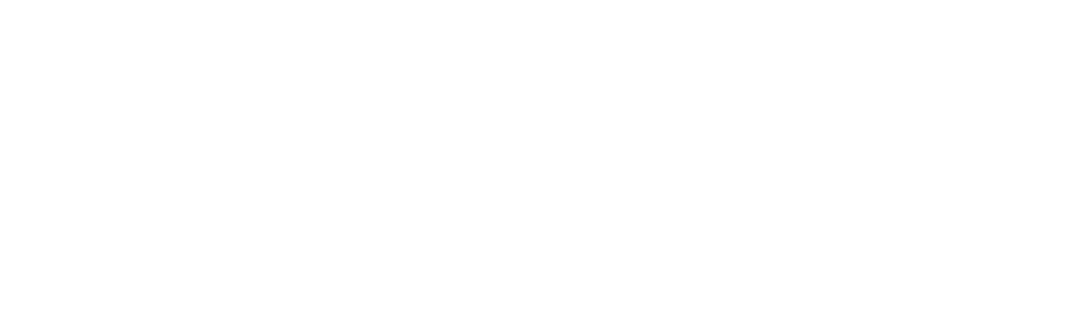 Website for Seniors Wish Foundation Canada